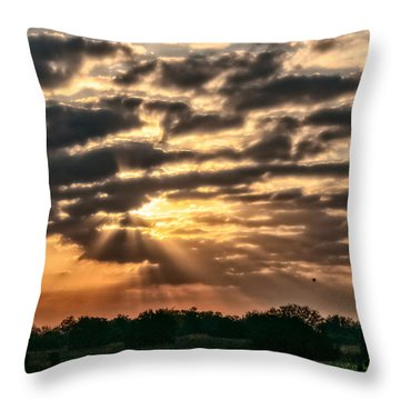 Throw Pillow featuring the photograph Central Florida Sunrise by Christopher Holmes
