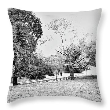 Throw Pillow featuring the photograph Central Park In Black And White by Madeline Ellis