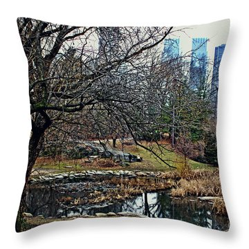 Central Park In January Throw Pillow by Sandy Moulder