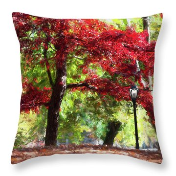 Central Park In Manhattan Throw Pillow