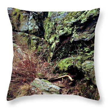 Central Park Rock Formation Throw Pillow by Sandy Moulder