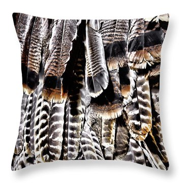 Ceremonial Feathers Throw Pillow by Ann Powell