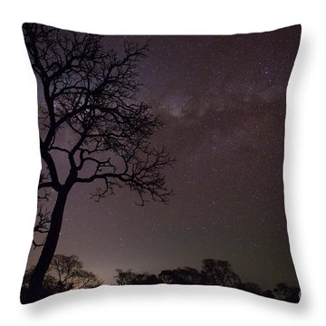 Cerrado By Night Throw Pillow by Gabor Pozsgai