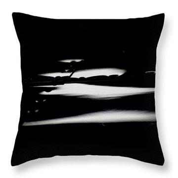 Throw Pillow featuring the photograph Cessna Art IIi by Paul Job