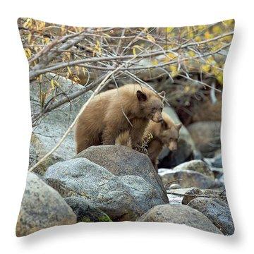 Cub Row Throw Pillow