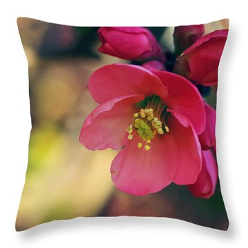 Chaenomeles Throw Pillow
