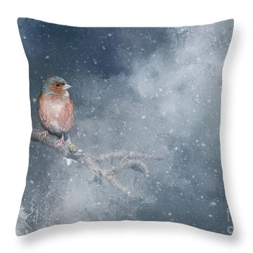 Chaffinch On A Cold Winter Day Throw Pillow