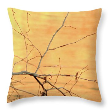 Chagrin River Gold Throw Pillow