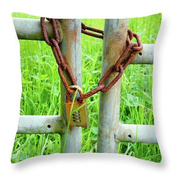 Chain On A Gate Throw Pillow
