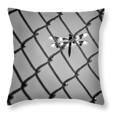 Chainlink Dragon Fly Throw Pillow