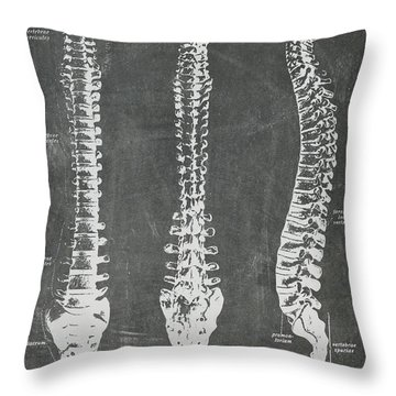 Chalkboard Anatomical Spines Throw Pillow