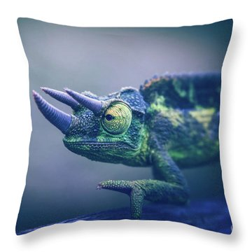 Throw Pillow featuring the photograph Chamaeleo Jacksonii by Sharon Mau