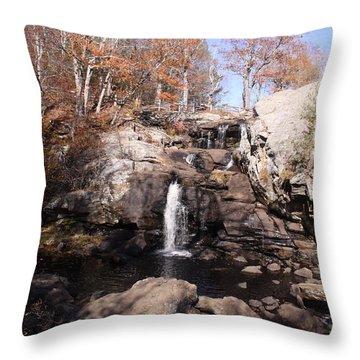 Champman Falls 11/7/16 Throw Pillow