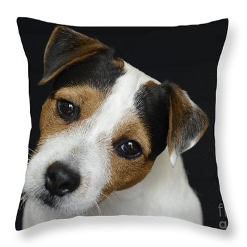 Chance 1 Throw Pillow