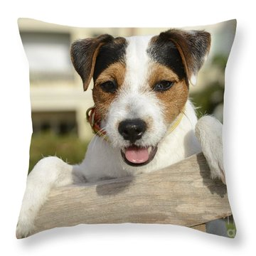 Chance 2 Throw Pillow