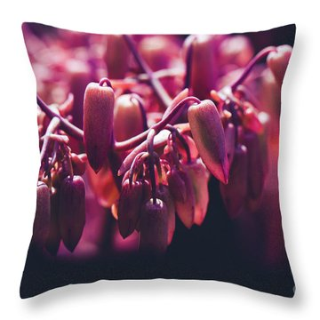Throw Pillow featuring the photograph Chandelier Plant Kalanchoe - A Solitary Morning by Sharon Mau