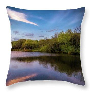 Chandler Lagoon Throw Pillow