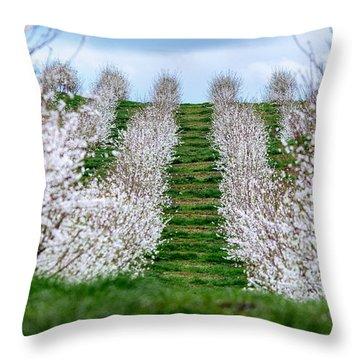 Change In Seasons  Throw Pillow