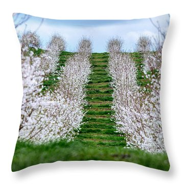 Change In Seasons  Throw Pillow