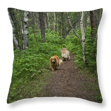 Change Of Heart Throw Pillow by Rhonda McDougall