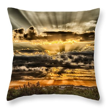 Changes Throw Pillow