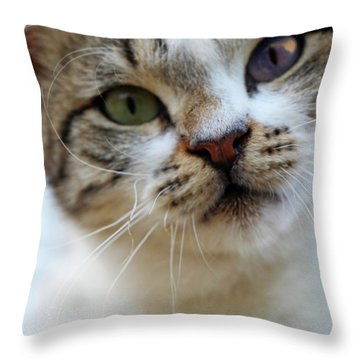 Throw Pillow featuring the photograph Changing Colors by Munir Alawi