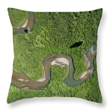 Changing Directions Throw Pillow