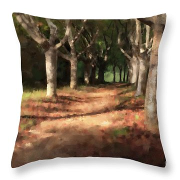 Throw Pillow featuring the digital art Changing Of Seasons by Dwayne Glapion