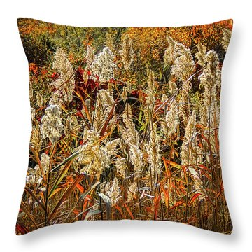 Changing Season Throw Pillow