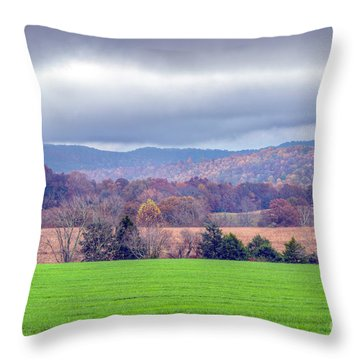 Throw Pillow featuring the photograph Changing Seasons by Wanda Krack