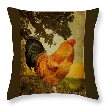 Chanticleer Throw Pillow by Lois Bryan
