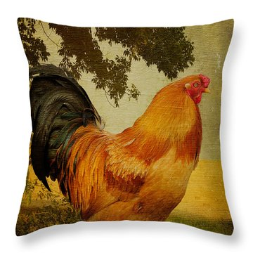 Throw Pillow featuring the photograph Chanticleer by Lois Bryan