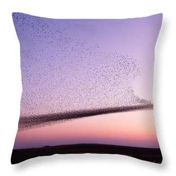 Chaos In Motion - Starling Murmuration Throw Pillow by Roeselien Raimond