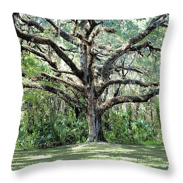 Chaotic Order Throw Pillow