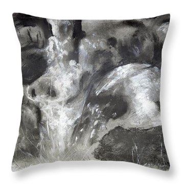 Charcoal Waterfall Throw Pillow