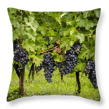Chardonnay Grape Cluster Throw Pillow