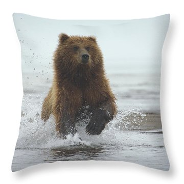 Charge Throw Pillow by Fraida Gutovich