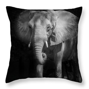 Charging Elephant Throw Pillow