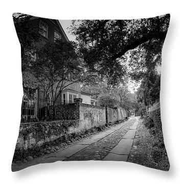 Charleston Ally Path Throw Pillow