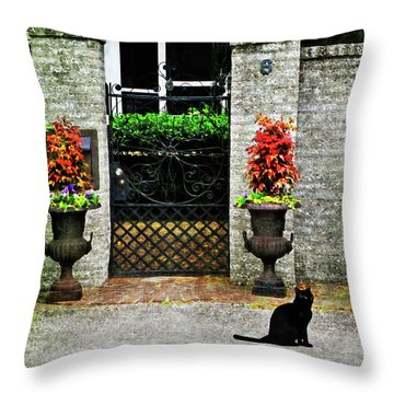 Charleston Cat Throw Pillow by Joan  Minchak