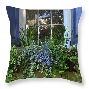 Charleston Flower Box 3 Throw Pillow