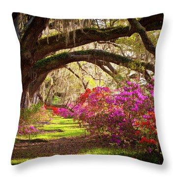 Charleston Sc Magnolia Plantation Gardens - Memory Lane Throw Pillow by Dave Allen
