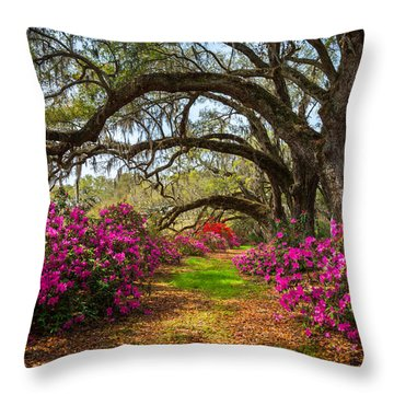 Charleston Sc Spring Flowers Scenic Landscape South Carolina  Throw Pillow