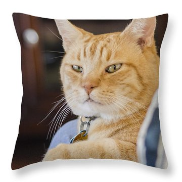 Charlie Cat Throw Pillow