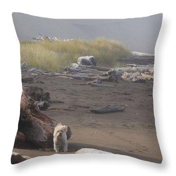 Charlie On Irish Beach Throw Pillow