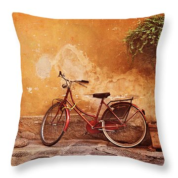 Charming Lucca Throw Pillow
