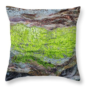Chartreuse Abstraction Throw Pillow