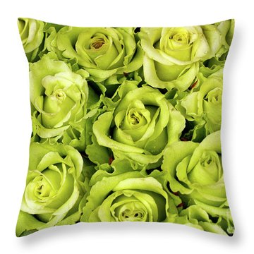 Chartreuse Colored Roses Throw Pillow