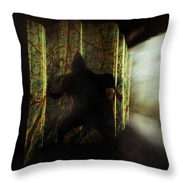 Chasing Shadows Throw Pillow