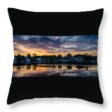 Chasing The Blues Away Throw Pillow